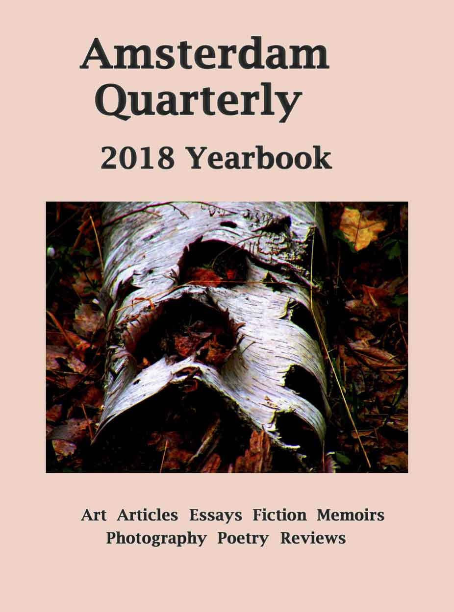 Eighth Annual Amsterdam Quarterly 2018 Yearbook Party